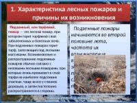 Природные пожары особенности лесных и торфяных пожаров